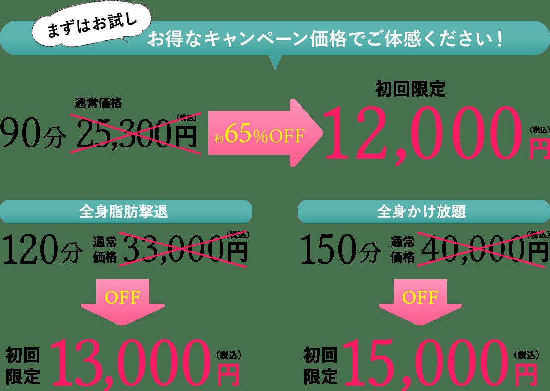 お得なキャンペーン価格でご体感ください!約65%OFF5,500円